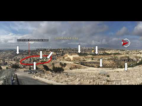 Green Olive Tours Blog • Palestine • Israel: Cousins - the