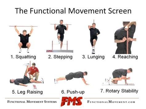FMS: Functional Movement Systems | FlexibilityRx