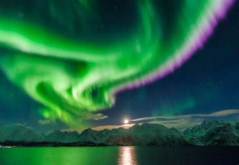 Norway is the best place to see the northern lights