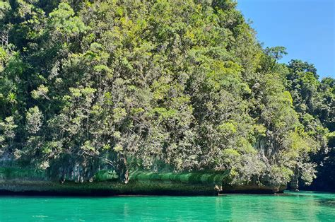 Siargao Island Tour Packages   e-Philippines Adventure
