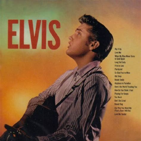 Elvis Presley - Playing for Keeps song lyrics from Elvis